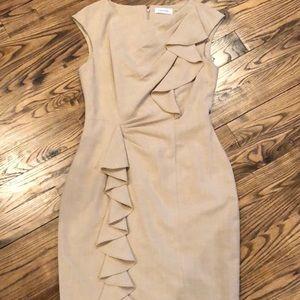 Calvin Klein Ruffled Shift Dress 6